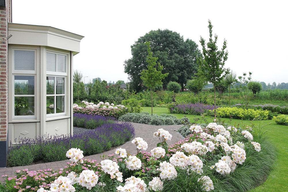 Tuil Vakbeplanting Rozen Lavendel